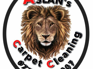 Professional Carpet Cleaning in Reading/Berkshire