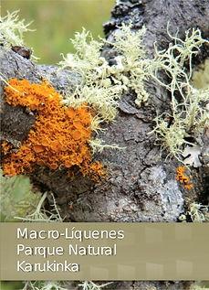 Macroliquenes Karukiknka.jpg