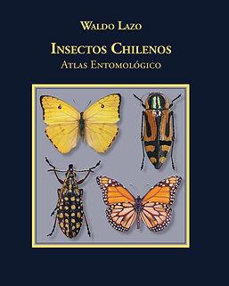Portada Insectos Chilenos.jpg