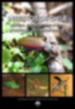 Insectos de Chile.jpg