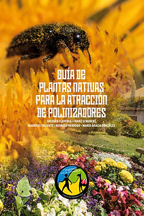 Plantas_nativas_para_atracción_de_polin