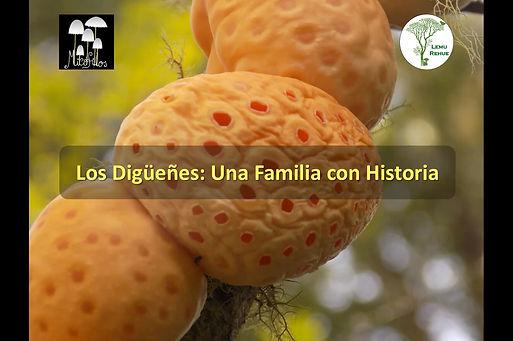Charla hongos comestibles y venenosos eb Chile