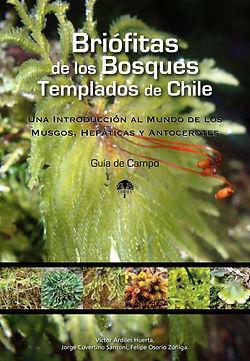 Briófitas_de_los_Bosques_Templados_de_C