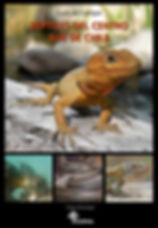 Guía_campo_reptiles_centro-sur_Chile.jp