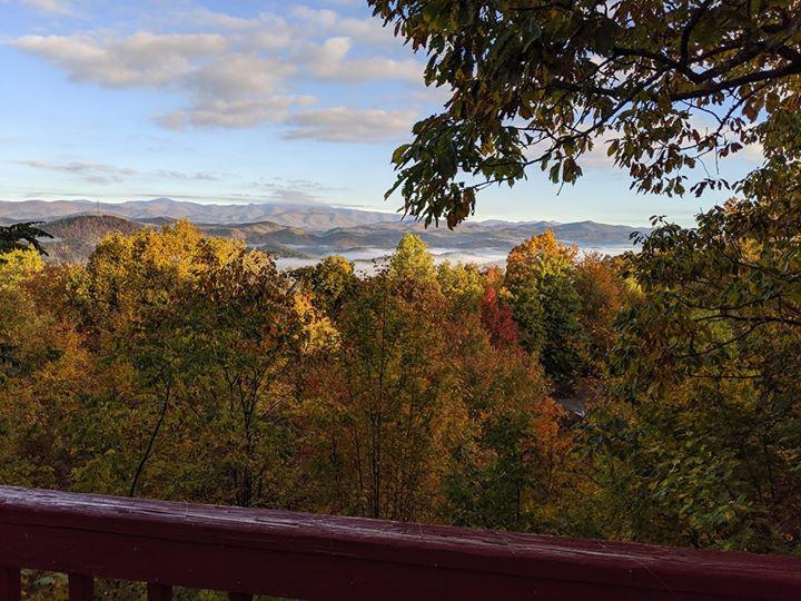 Fall trees with long-range mountain views