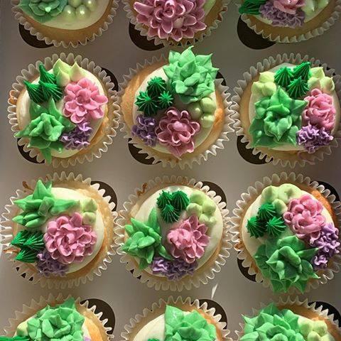 SucculentCupcaks.jpg