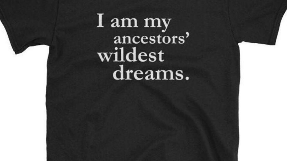 I am my ancestors wildest dreams