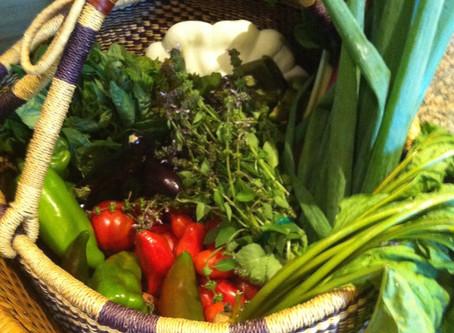 Your Yoga – Season of Harvest