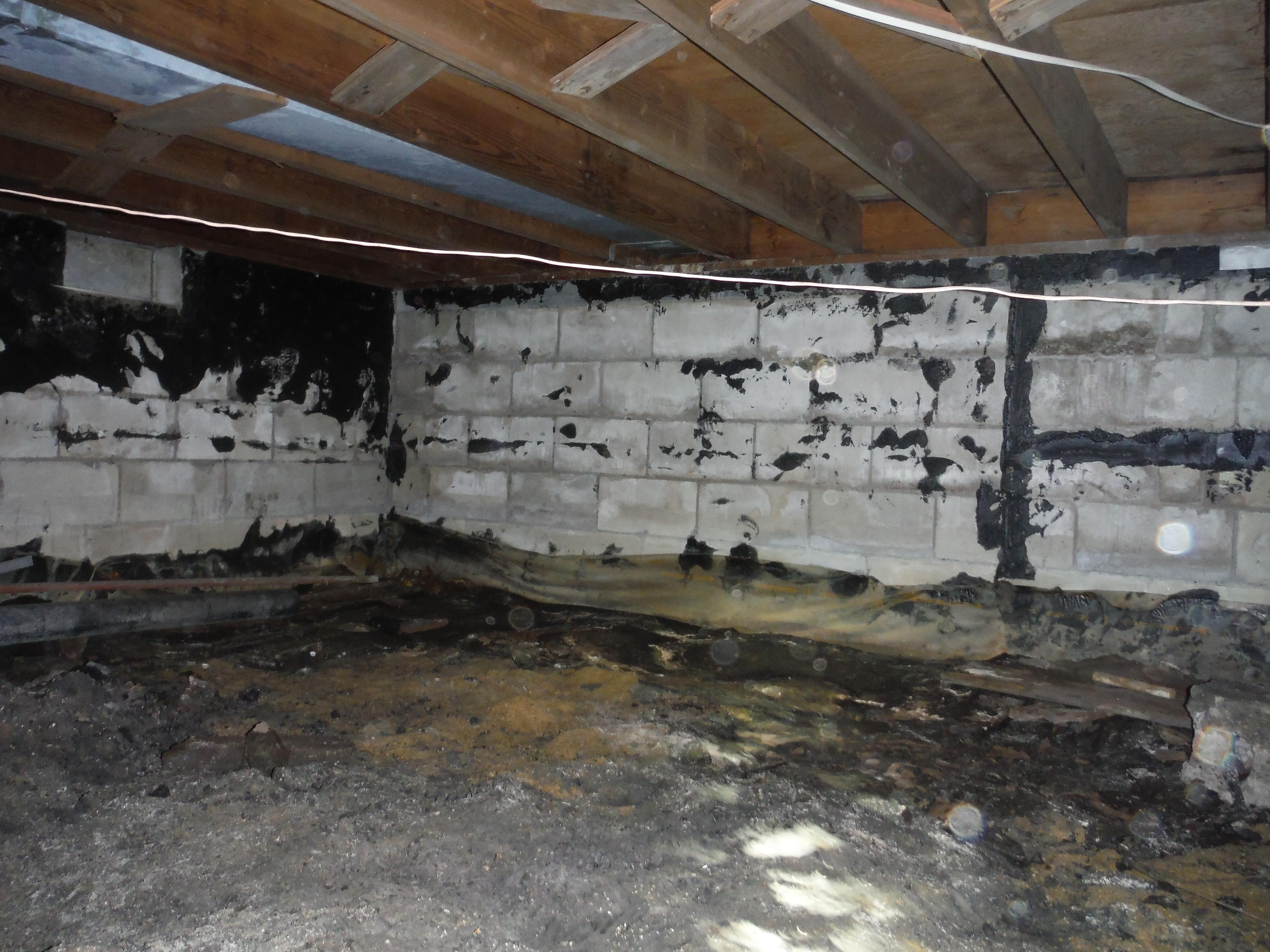 Debris & Moisture in Crawlspace