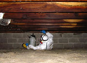 Crawlspace Solutions - Mold Removal, Insulation & Pest Control