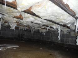 BEORE: Rotten Wet Floor insulation