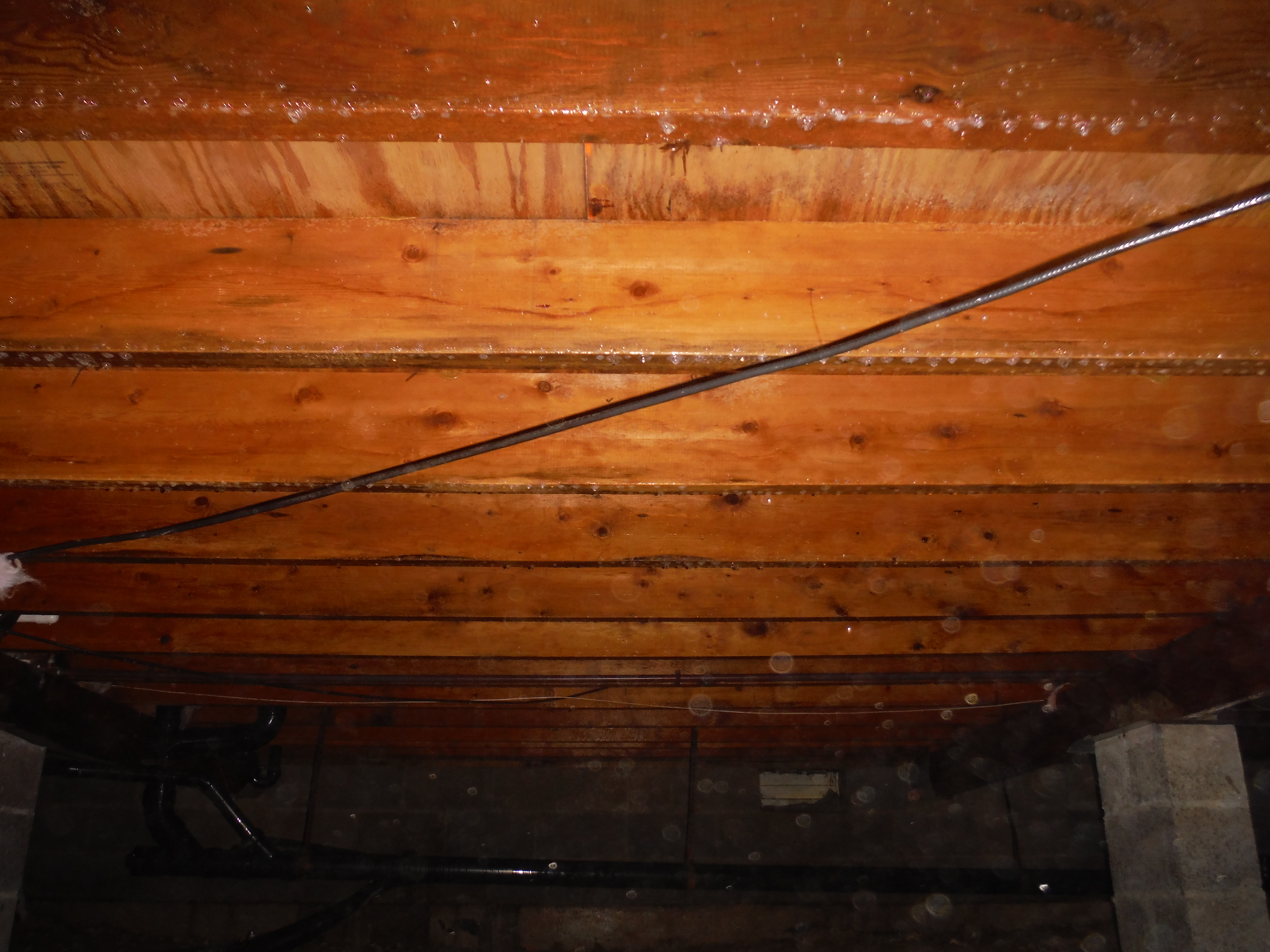 AFTER: Mold Removal & Prevention
