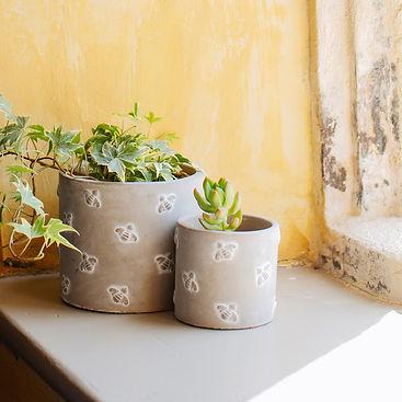 mini_planter.jpg