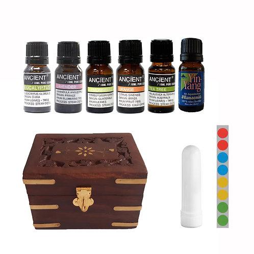 Start 6 etherische oliën - opbergbox - neusinhaler - stickervel