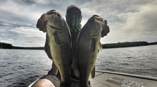 Dropshot Tweaks for Largemouth & Smallmouth Bass