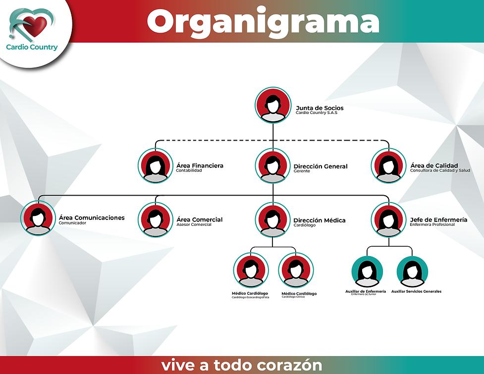Organigrama -01-01.png