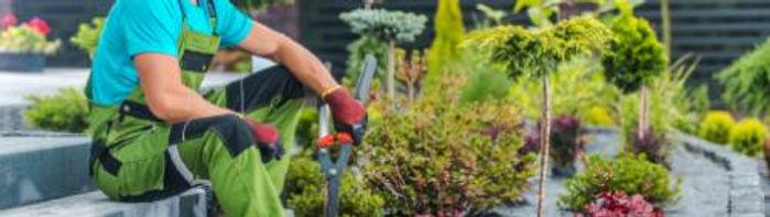 gardener_1504997111_Compressed.jpg