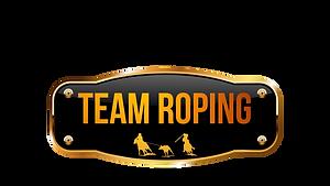 LOGO-TEMA-ROPING.png