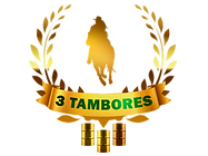 3-TAMBORES.png