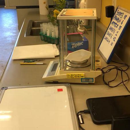 Labwork Short: Measuring Traits