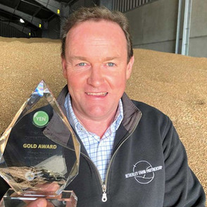 Top quality wheat is simple for Simon