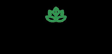 SLM Agency Logo_edited.png