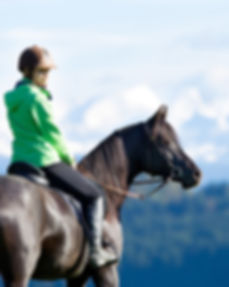Balade equestre.jpg