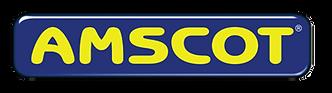 amscot.png