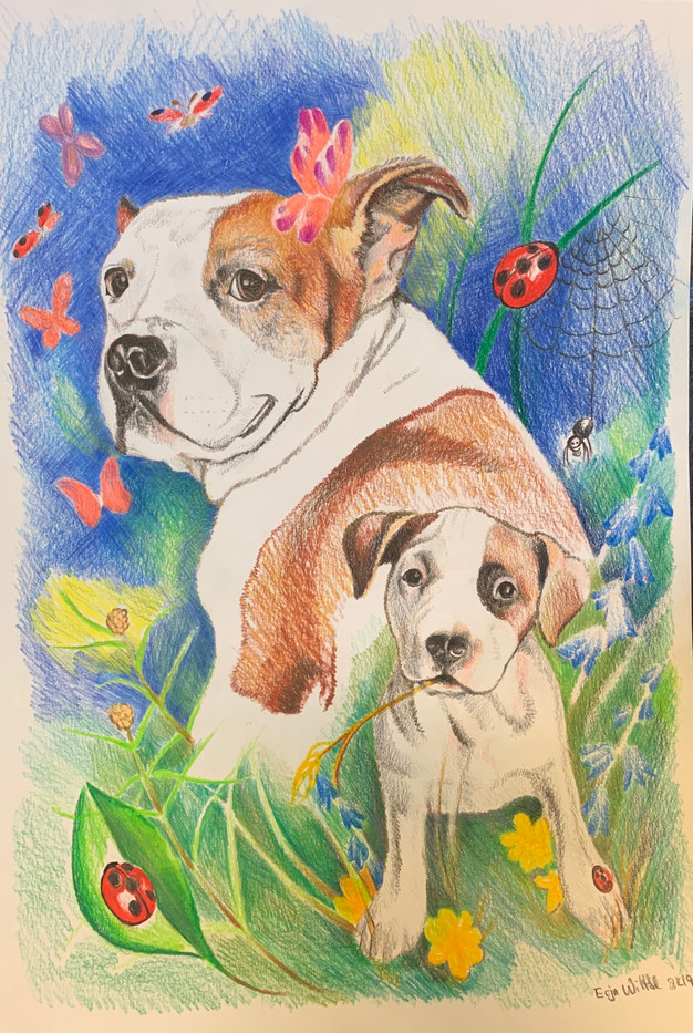 portrait commission for a client