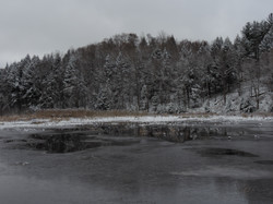 Small Pond early Winter