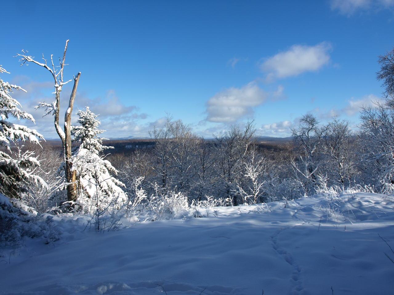 Tooley Mountain Summit Winter