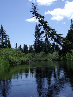 Oswegatchie River at Inlet