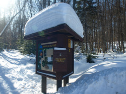 Wild Forest Informational Kiosk