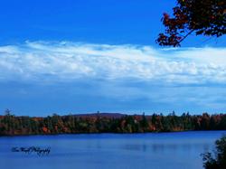 """""""Aristocrat bay"""" Star Lake"""