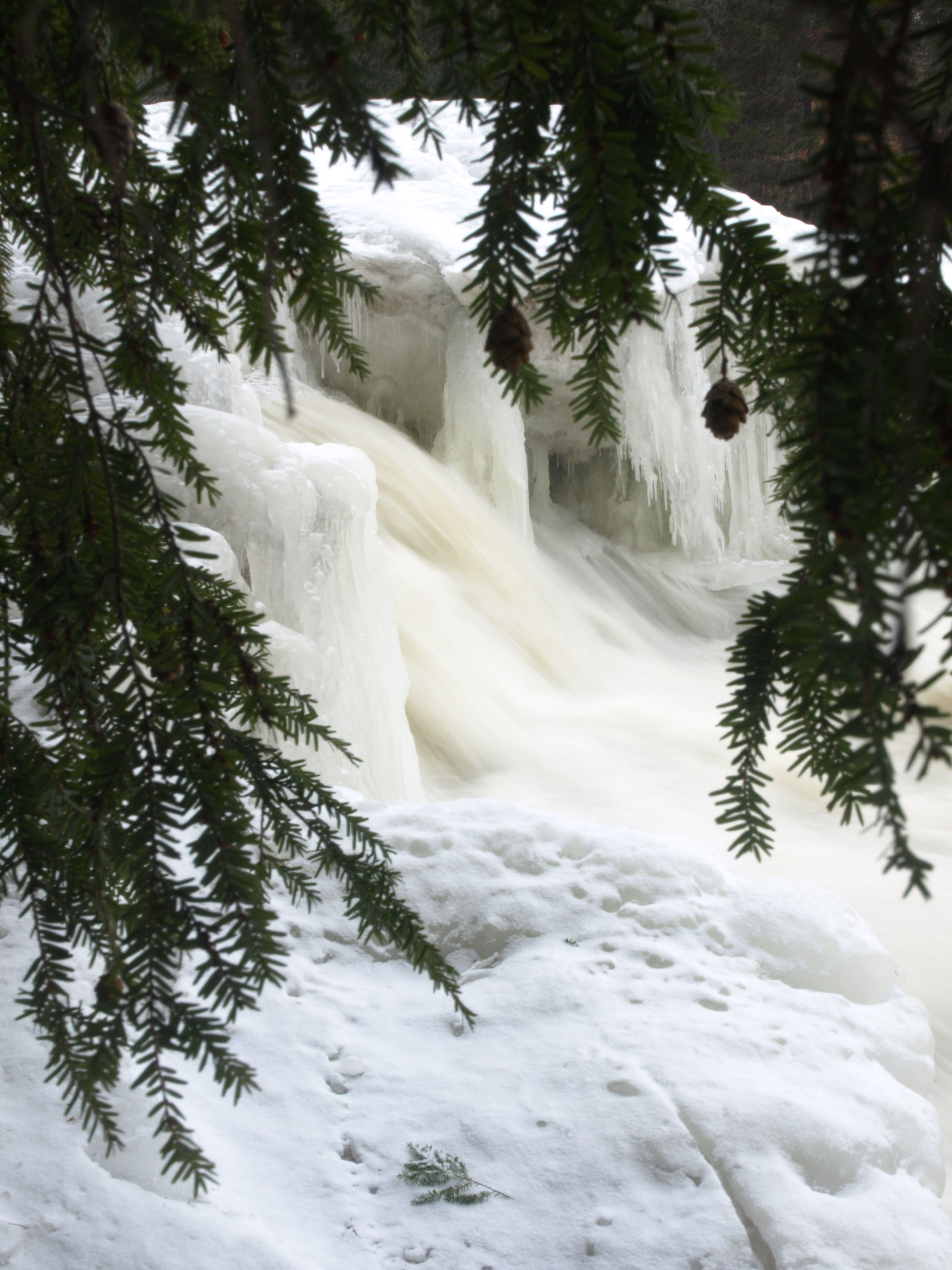 Twin Falls Winter