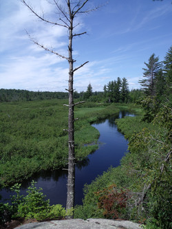 Oswegatchie River from High Rock