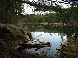 Irish Pond