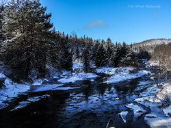 Little River Oswegatchie Trail Rd