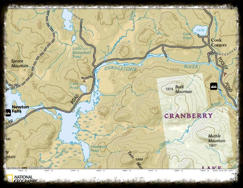 Oswegatchie River Windfall