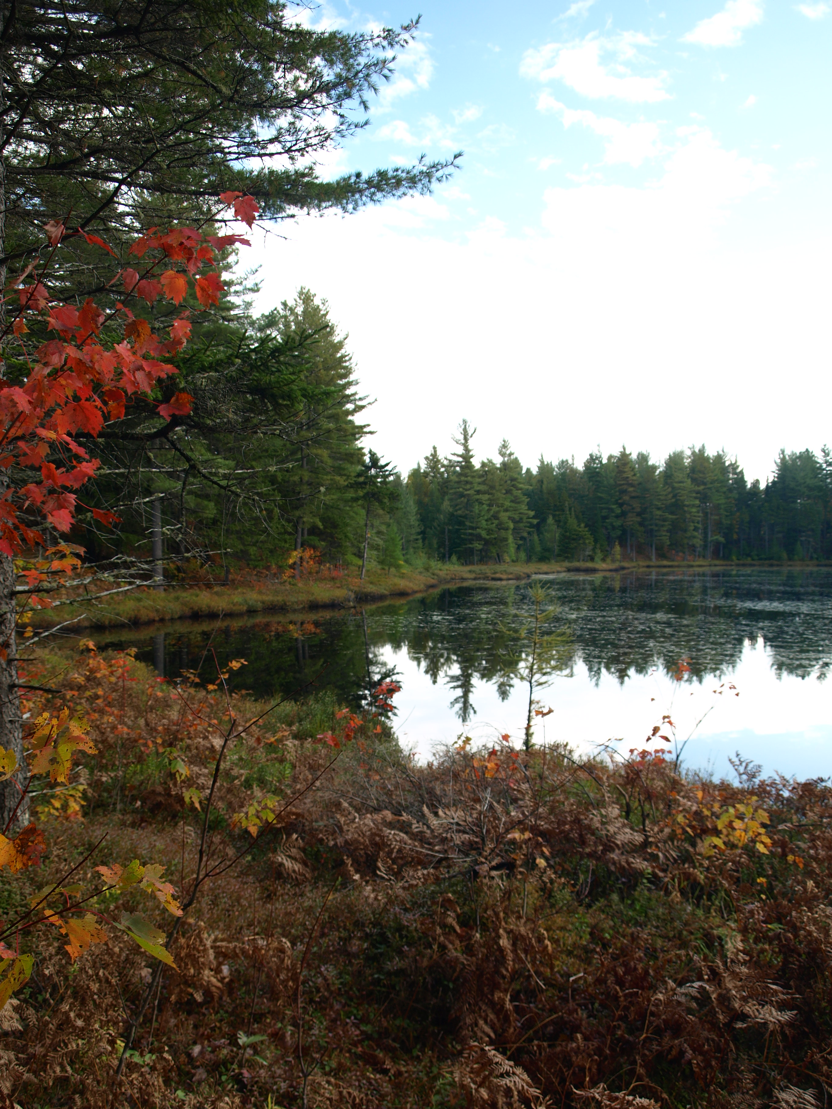 Balsam Pond