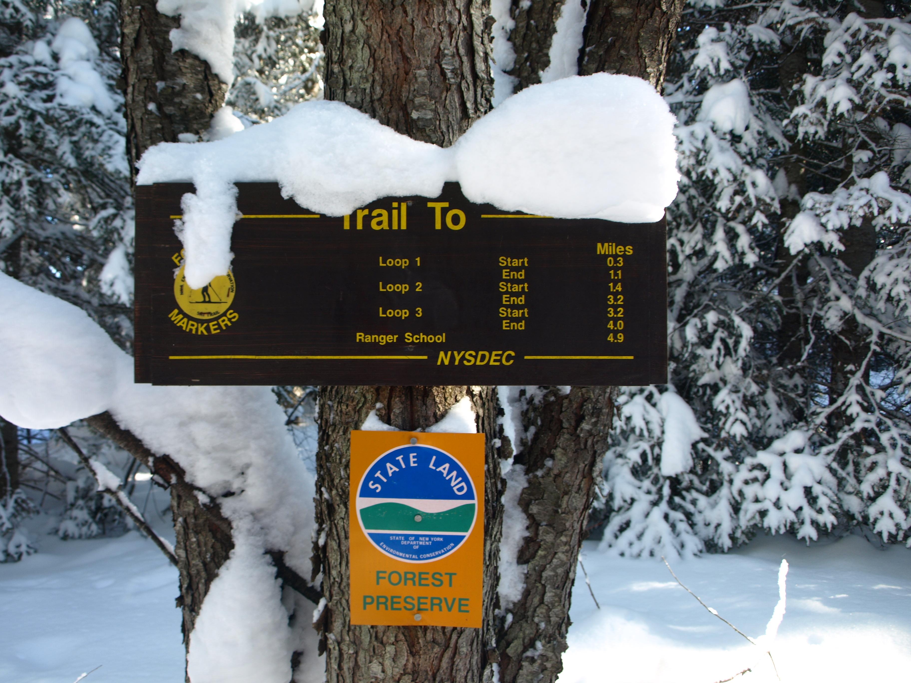 Peavine Swamp Trail Sign