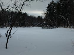 Along the Burntbridge Pond Trail