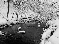 Twin Lakes Stream