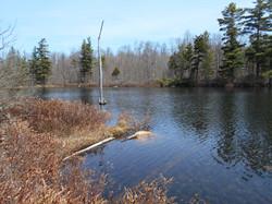 Nick's Pond
