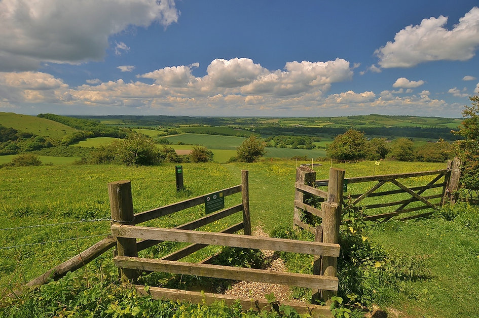 Old Winchester Hill June 2014.jpg