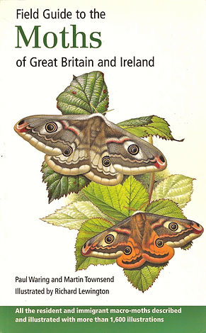 Guide to Moth of the UK Book cover.jpg