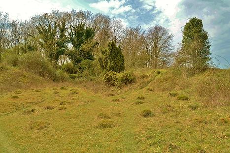 Noar Hill in the spring.JPG