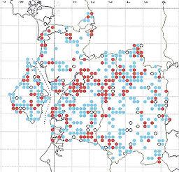 Brown Argus Website Map0003.jpg