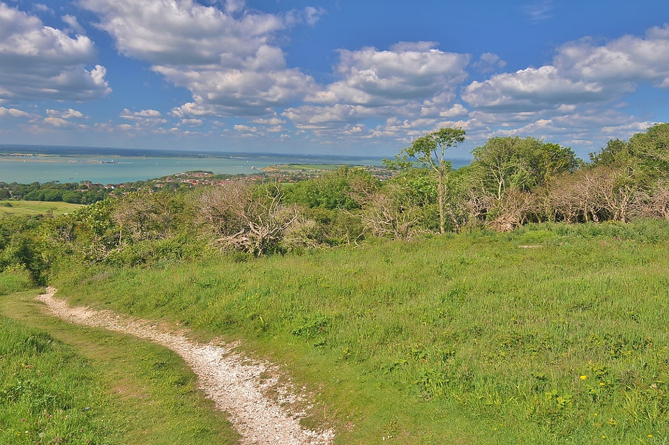 Tennyson Down Isle of Wight.jpg