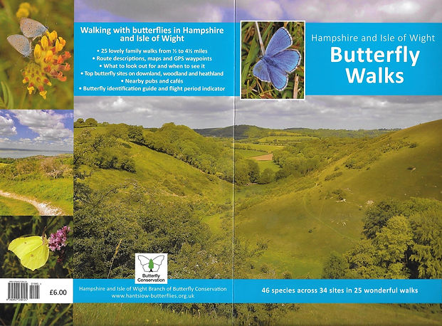 Hampshire and Isle of Wight Butterfly walks.jpg